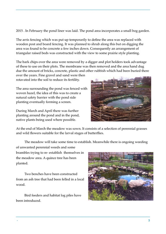 Butterfly blog-page-2